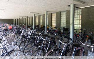 Transformatie fietsenstalling tot aula Develsteincollege - Topos